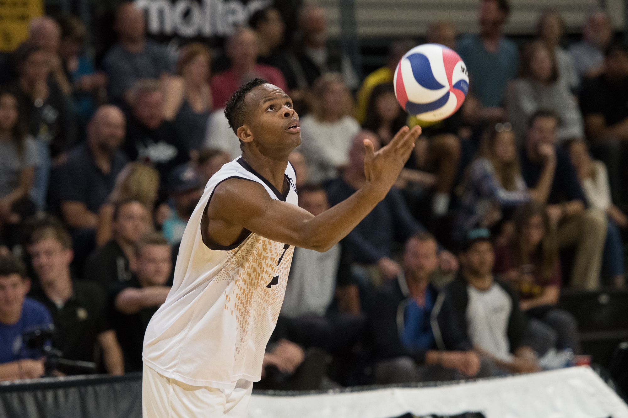 15c02a18e945 Long Beach State Gears Up For Title Rematch - Big West Conference