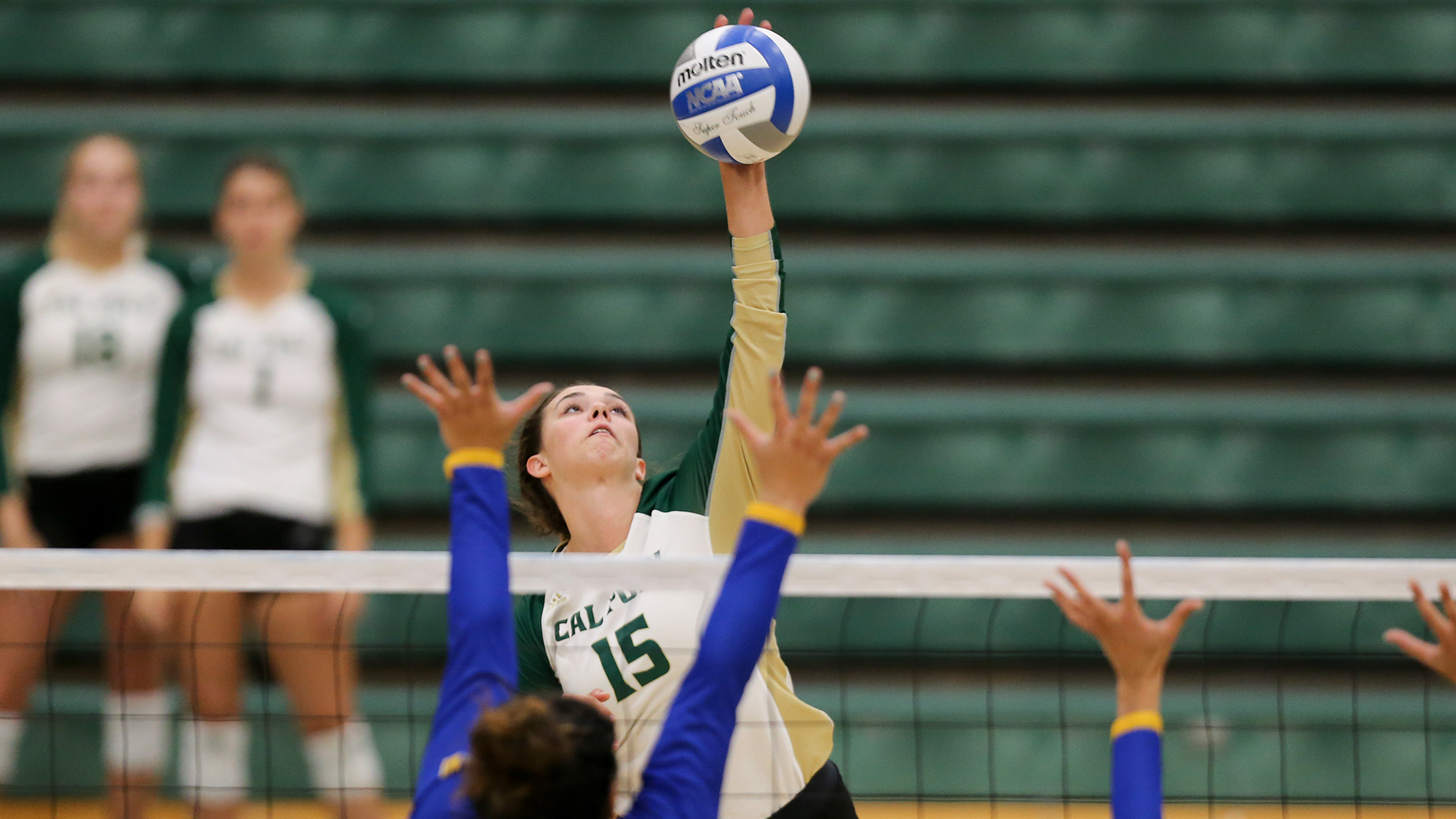 Tournament Talents Capture Women S Volleyball Weekly Awards Big West Conference